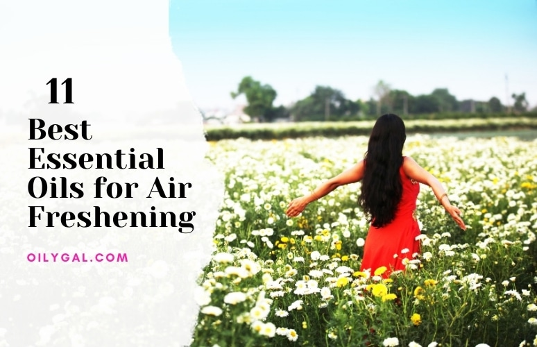 Best Essential Oils for Air Freshening